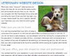 Veterinary websites