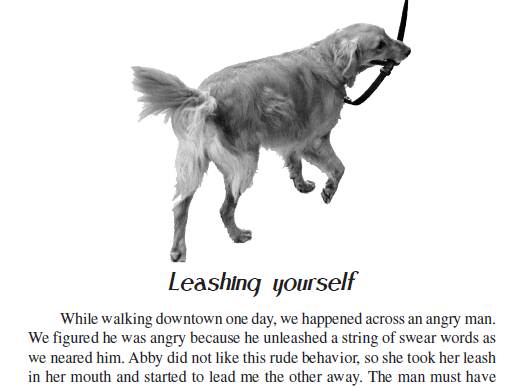 Copy error in my book, Nose-to-Nose Networking